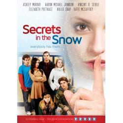 DVD-Secrets In The Snow