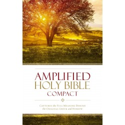 Amplified Holy...
