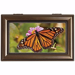 Music Box-Monarch Butterfly