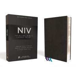 NIV Thinline Bible/Large...