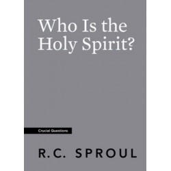 Who Is The Holy Spirit?...